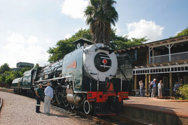 King Zog, Rovos Rail Station, Pretoria