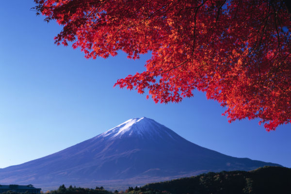 Autumn colours near Mt Fuji