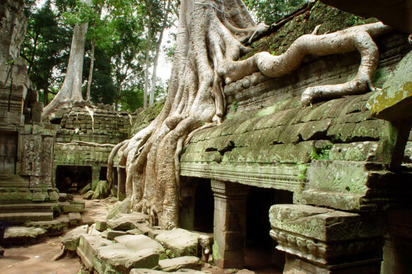 Ta Prohm (Cambodia extension)