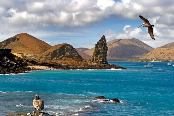The Galapagos Islands