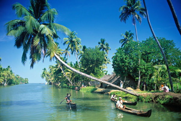 The Languid Backwaters Of Kerala