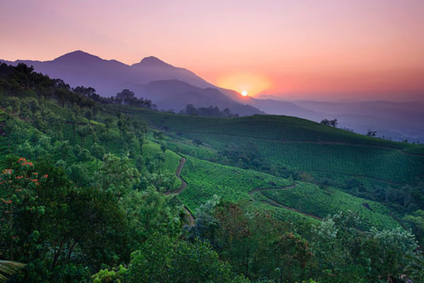 The lush landscapes of southern Kerala