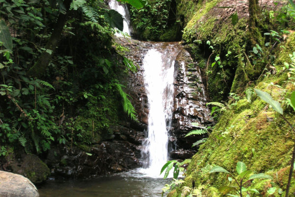 Mindo waterfall