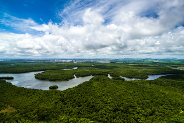 Aerial view of the mighty Amazon (extension)