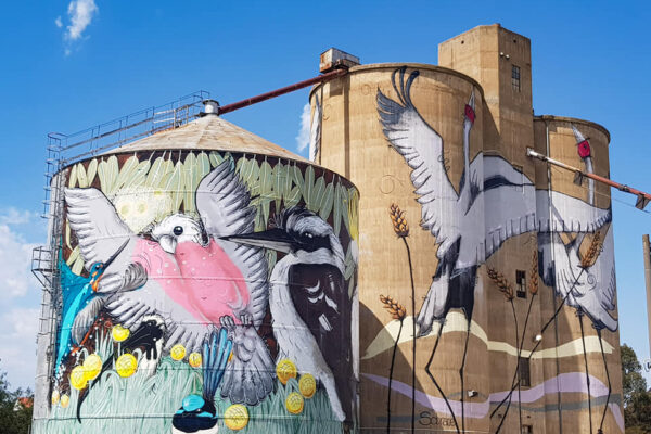 Silo art by Sobrane on the Campaspe Art Trail