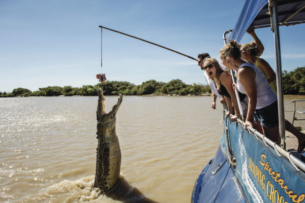 See the jumping crocodiles on the Adelaide River