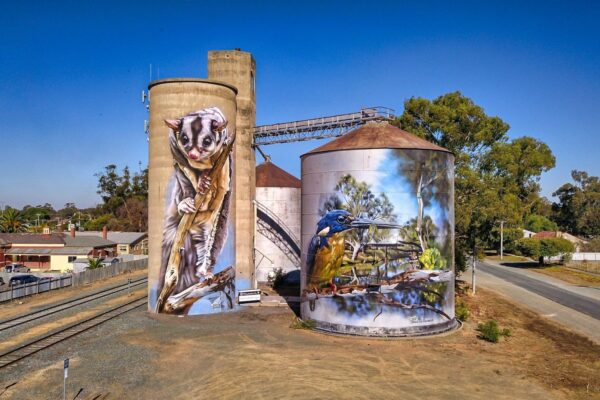 Silo art on the Campaspe Art Trail