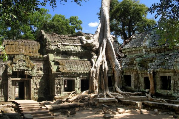 Ta Prohm, Cambodia (extension)