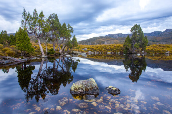 Wombat Pool, Cradle Mountain National Park